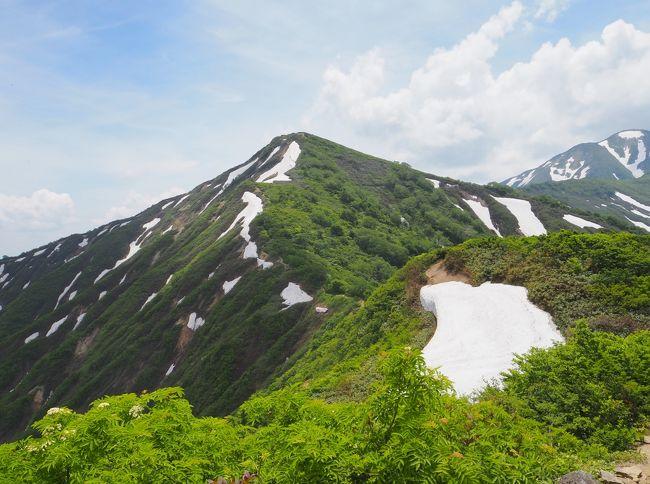 大朝日岳と雪渓