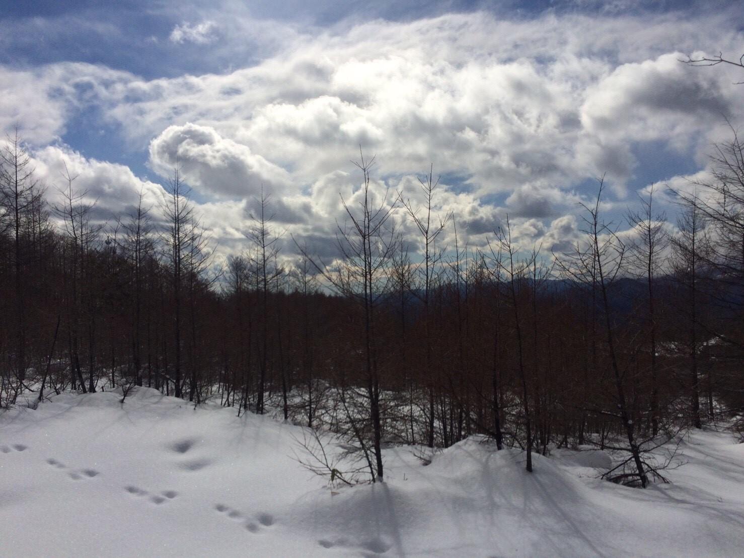 鶏頂山スノーシュー