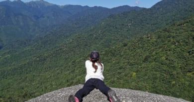 屋久島白谷雲水峡太鼓岩